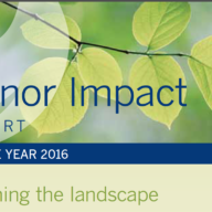 Donor Impact Report 2016 Cover detail